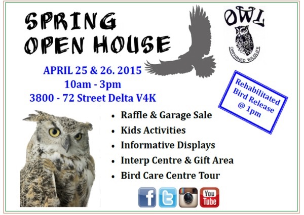 O.W.L open house フライヤー