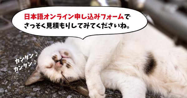 見積もり猫