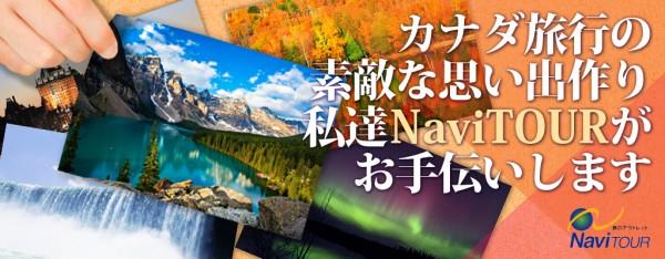 navi_canada_navi 2014
