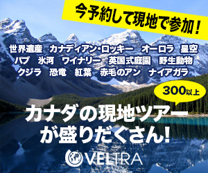 veltra_banner_a8
