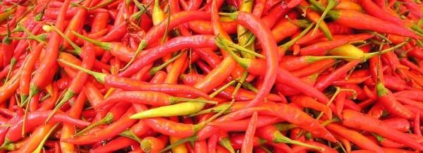 chilli-pepper-449_960_720-e1478750564758-1