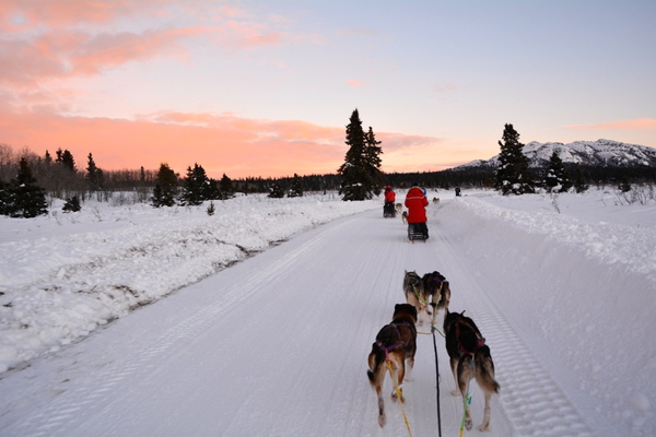 simon-n-dogsled-dec-2013-copy