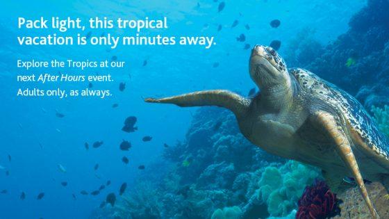 Vancouver Aquarium After Hours @ Vancouver Aquarium | Vancouver | British Columbia | カナダ