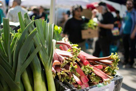 ライリー・パーク・ファーマーズマーケット(Riley Park Farmers Market) @ ライリーパーク | Vancouver | British Columbia | カナダ