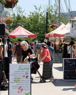 メインストリートステーション・ファーマーズマーケット(Main St Station Farmers Market) @ 1100 Station Street | Vancouver | British Columbia | カナダ