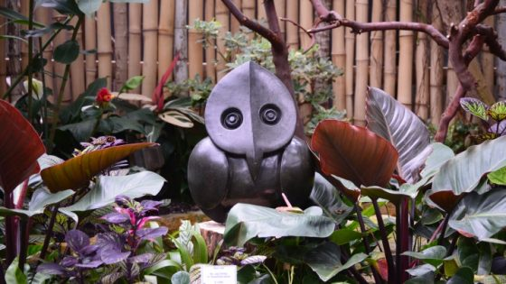 ZimCarvings Exhibition @ブローデル植物園 @ Bloedel Conservatory | Vancouver | British Columbia | カナダ