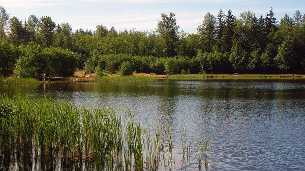 グリーンティンバー湖