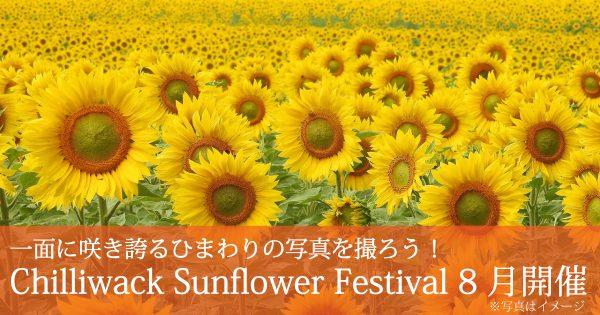 Chilliwack Sunflower Festival @ Chilliwack | British Columbia | カナダ