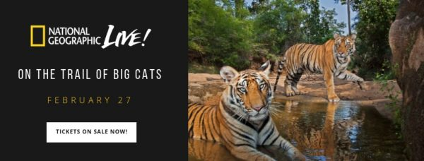 National Geographic Live: On the Trail of Big Cats 2019 @ Orpheum Theatre
