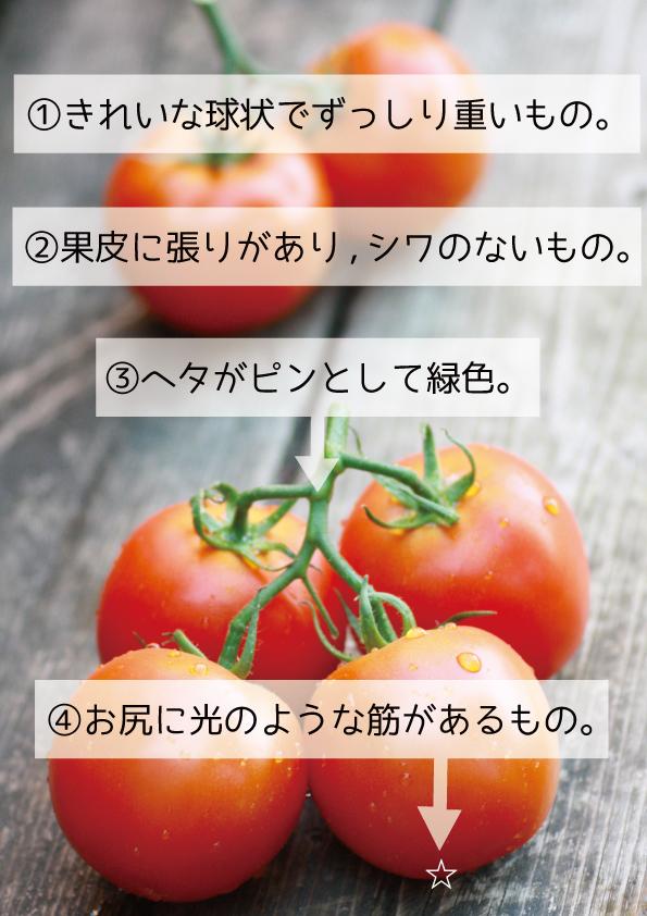 tomatohowtolook1124no3