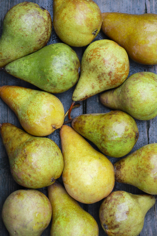 gathered-pear0110no1