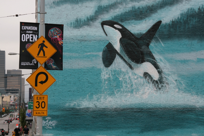 whaling wall 1