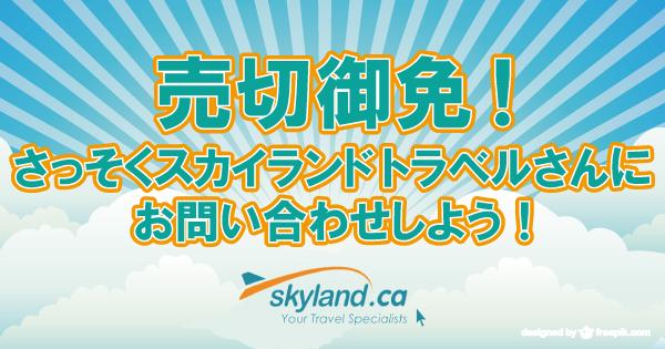 skyland11