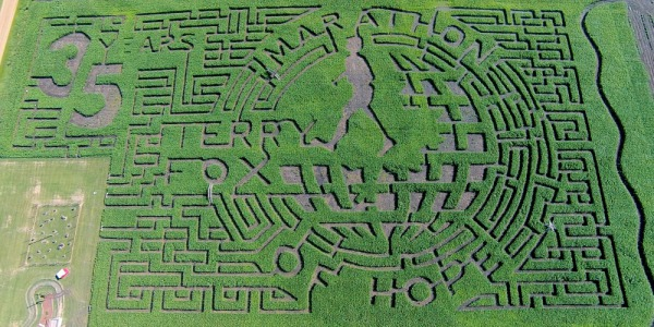 Alberta maze