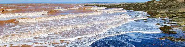Joggins Fossil Cliffs  UNESCO World Natural Heritage Site at Joggins  Nova Scotia  Canada