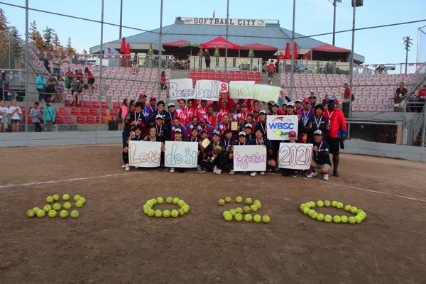 fastpitch 2020 ボール