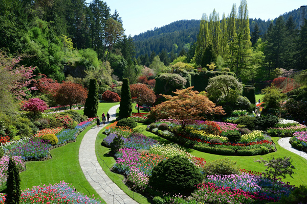butchartgarden.vic008