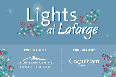 Lights at Lafarge @ Lafarge Lake