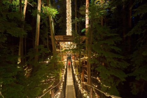 キャニオンライツ(Canyon Lights) at Capilano Suspension Bridge @ Capilano Suspension Bridge | North Vancouver | British Columbia | カナダ