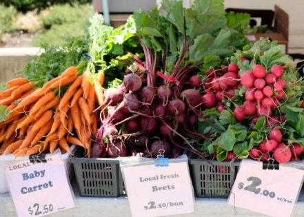 ファーマーズマーケット(Farmers Market - Hastings Park)2020 @ Hastings Park - Centregrounds | Vancouver | British Columbia | カナダ