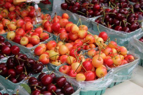 Kitsilanoファーマーズマーケット(Kitsilano Farmers Market) 2020 @ Kitsilano Community Centre