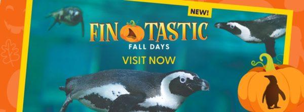 バンクーバー水族館 Fin-tastic Fall Days @ Vancouver Aquarium