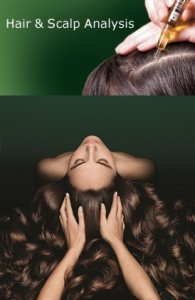 ReneFurterer-scalp